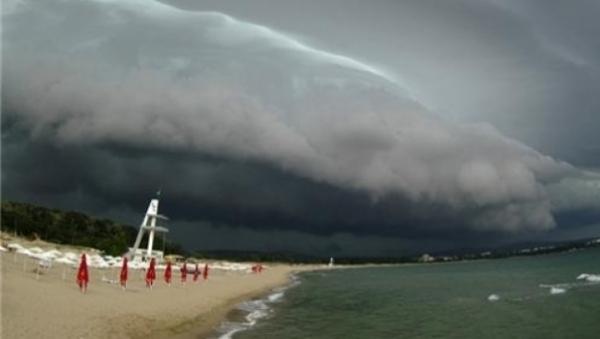 COD GALBEN de furtuni pe Litoral