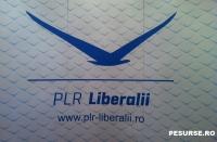 Gratiela Gavrilescu, PLR: Antonescu A TRĂDAT în cel mai josnic mod cetățenii care au votat în 2012