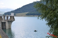 Un tanar a fost gasit inecat in barajul Paltinu