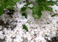Ploi torenţiale, GRINDINĂ şi vijelii pentru ZILELE URMĂTOARE