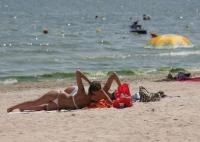 Surpriza pentru turistii de pe litoralul romanesc. Si-au scos telefoanele si au inceput sa filmeze cand au vazut - FOTO