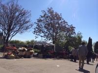 In atentia Rosal si a Politiei Locale Ploiesti: O zona din Ploiesti incepe sa semene cu un ghetou