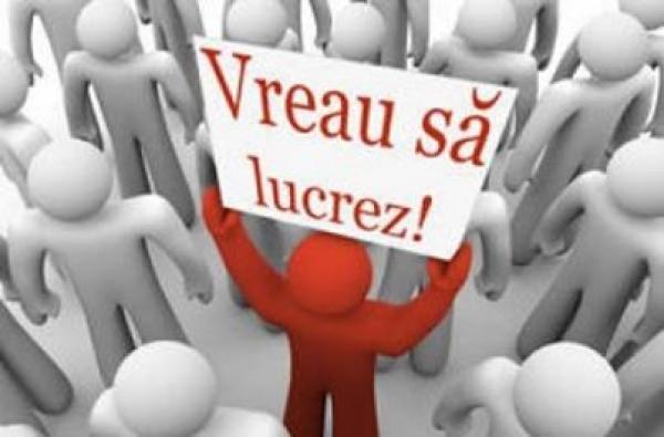 Sute de locuri de muncă, disponibile în Ploieşti. Iată oferta completă