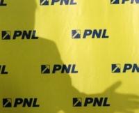 Rosca si Guran, inscrisi in cursa pentru un post de vicepresedinte PNL