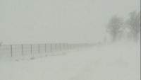 Cod galben de ploi si ninsori. In Prahova NINGE INCONTINUU de cateva ore