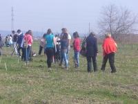 2.500 de puieti au fost plantati pe Centura de Est a Ploiestiului. Vezi cine a participat