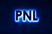 """Obraznicii"" din PNL, mutati in ultima banca"