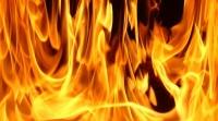 Au dat foc vegetatiei de pe domeniul public!