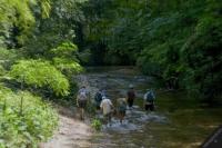 Turişti surprinşi de o viitură pe Valea Caraiman din Bucegi. Echipe de salvamontişti au plecat în căutarea lor