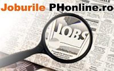Joburi disponibile saptamana asta la AJOFM Ploiesti