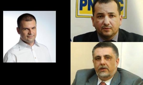 EXCLUSIV/ Incepe batalia in PNL: Mircea Rosca VS. Beciu & Botez