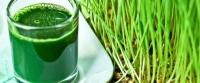 Sucul 100% natural ce poate lupta cu cancerul și elimina toxinele