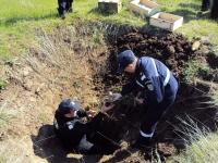 Grenade si proiectile neexplodate, descoperite in Prahova