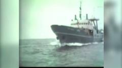 Caz incredibil: Misterul vapoarelor-fantoma romanesti. Unde au fost fotografiate mai multe nave disparute in anii '90