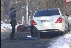 Andreea Tonciu a LOVIT un bărbat pe TRECEREA DE PIETONI !!!!!!!!!!  Ce a facut la venirea Politiei