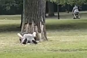 Șocant! Au făcut sex în plină zi într-un parc plin de copii  IMAGINI +18