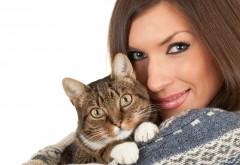 De ce e sanatos sa ai o pisica. Descoperire incredibila!