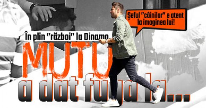 """Şeful """"câinilor"""" e atent la imaginea lui! În plin """"război"""" la Dinamo, Mutu a dat fuga la…"""