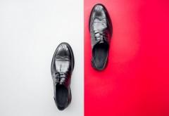Ce fel de pantofi ar trebui sa porti in functie de costum?