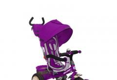 Tricicleta Multifunctionala Sunny Steps