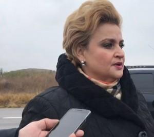 Ce spune ministrul Gratiela Gavrilescu despre incendiul din Mimiu