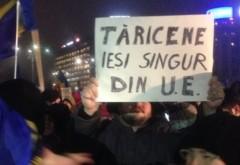 Tăriceanu, despre protestatari: În loc să pună mâna pe-o carte, se uită pe Facebook şi cred că ştiu totul