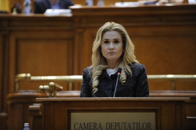 Deputatul PSD Laura Moagher-Fulgeanu sustine recuperarea prejudiciului, in detrimentul confiscarii bunurilor imobile