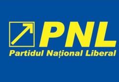 Continuă EXECUȚIILE în PNL: Încă 9 primari au fost EXCLUȘI din partid