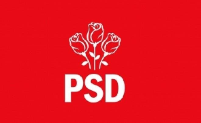 PSD își trimite artileria grea pentru anchetarea alegerilor