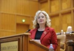 Cine este Camelia Gavrilă, profesoara de limba română propusă de Viorica Dăncilă ministru al Educației