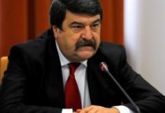 Toni Greblă, la sedinta CCR: 'Coaliția PSD-ALDE era în funcțiune când premierul a solicitat numirea miniștrilor titulari'