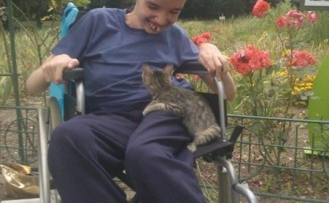 Incalificabil! Guvernul Orban taie ajutoarele copiilor cu handicap