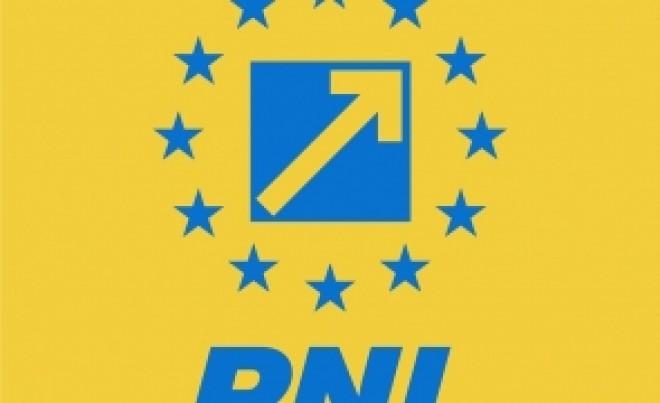 Ai lor sunt mai buni! PNL e plin de PENALI care nu vor fi exclusi din partid