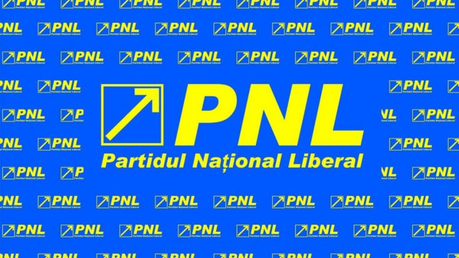 Condidat PNL la Consiliu Judetean, acuzat ca isi face campanie ilegal, din bani publici