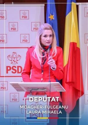 Laura Fulgeanu-Moagher explica in ce consta planul PSD de combatere a pandemiei