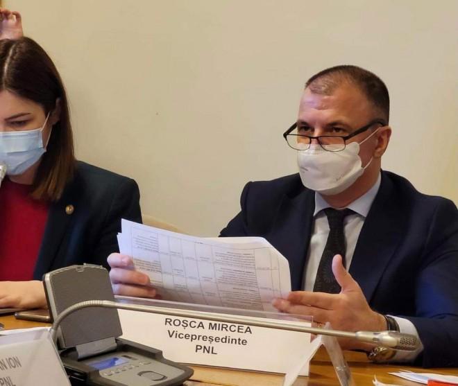 Mircea Rosca anunta demararea unui program de sprijin pentru IMM. Pentru ce se vor da banii