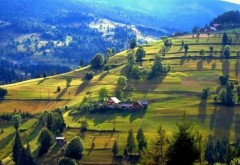 Cei mai mari tradatori au ajuns la Guvernare! Transilvania, retrocedată ungurilor, bucată cu bucată