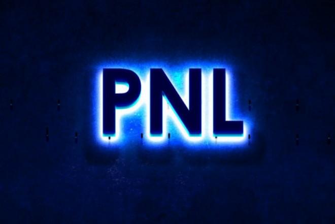 Activistii PNL atacati cu oua si pietre