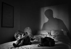CASTRAREA CHIMICĂ a violatorilor, ADOPTATĂ în Senat
