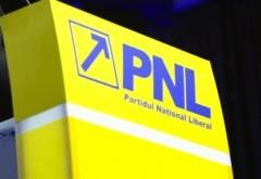 Cine este noul PREŞEDINTE al PNL