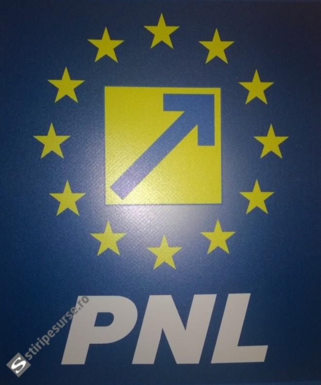 """Vicepresedinte PNL ii da dreptate lui Ponta: """"NU suntem pregatiti de guvernare"""""""