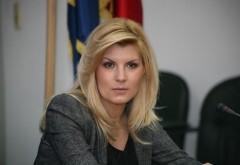 Elena Udrea, declaraţie SURPRINZĂTOARE la miezul nopţii, pe Facebook