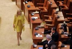 Situație hilară în Parlament: Udrea va fi adusă cu cătușe la Camera Deputaților
