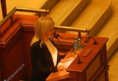 Parlamentarii o execută la foc automat pe Elena Udrea
