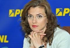 """Numele Alinei Gorghiu apare în """"Dosarul Șova"""""""