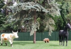Băsescu dă explicaţii despre vacă, cal şi urs. Cum face mişto de presă