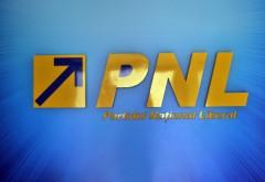 Silviu Mănăstire, dezvăluiri zdrobitoare despre penalii din PNL