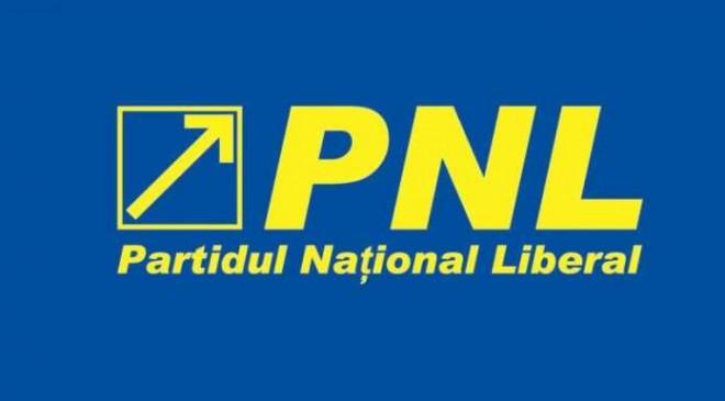 PNL, disperat sa acapareze primăriile PSD la alegerile locale din 2016. Ce plan-bomba au pregatit