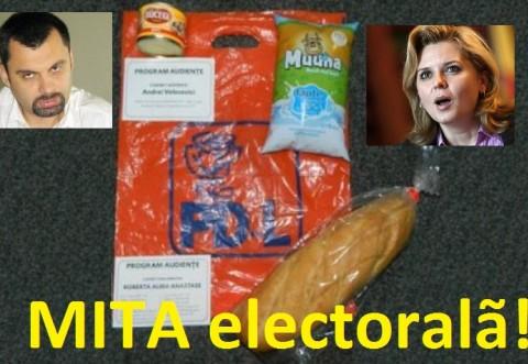 Votati PDL? Votati Dobre si Anastase - campionii spagilor, ai contractelor cu firme-fantoma si ai mitei electorale