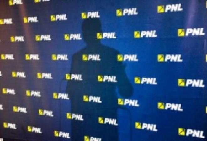 Un greu din PNL, condamnat la doi ani de inchisoare